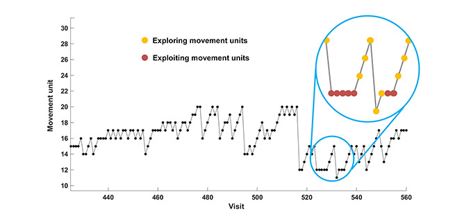Behavioural Quantitative Analysis of Choreographic Decision-Making